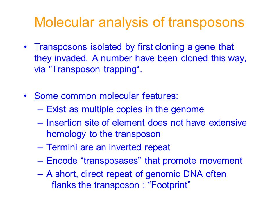 Molecular analysis of transposons Transposons isolated by first cloning a gene that they invaded. A number have been cloned this way, via