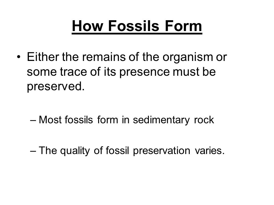 Fossils can show: –That life on Earth has changed over time. –What past life forms were like and if they are extinct (the species died out) –The struc