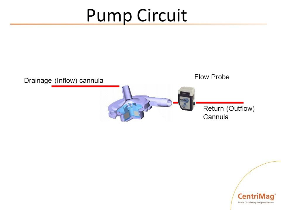 Pump Circuit Drainage (Inflow) cannula Return (Outflow) Cannula Flow Probe