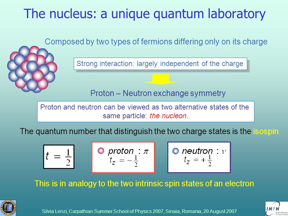 Silvia Lenzi, Carpathian Summer School of Physics 2007, Sinaia, Romania, 20 August 2007 The nucleus: a unique quantum laboratory Composed by two types