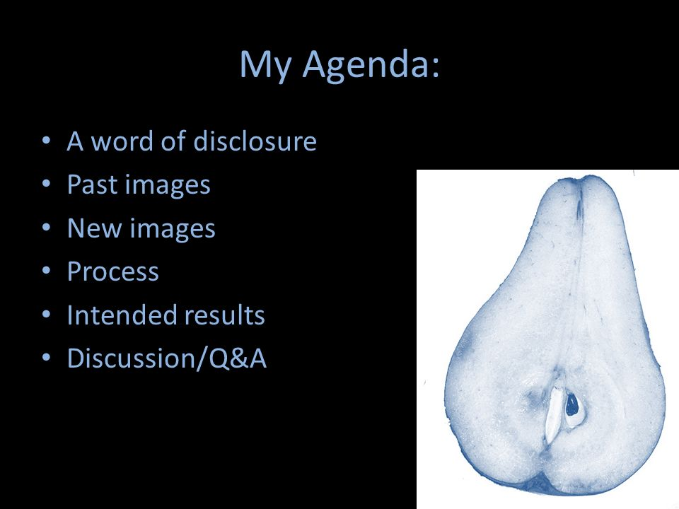 My Agenda: A word of disclosure Past images New images Process Intended results Discussion/Q&A