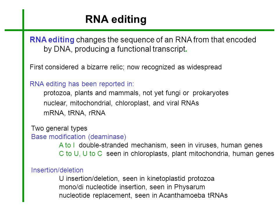 RNA editing changes the sequence of an RNA from that encoded by DNA, producing a functional transcript. First considered a bizarre relic; now recogniz