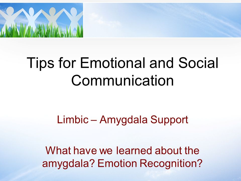 Tips for Emotional and Social Communication Limbic – Amygdala Support What have we learned about the amygdala? Emotion Recognition?