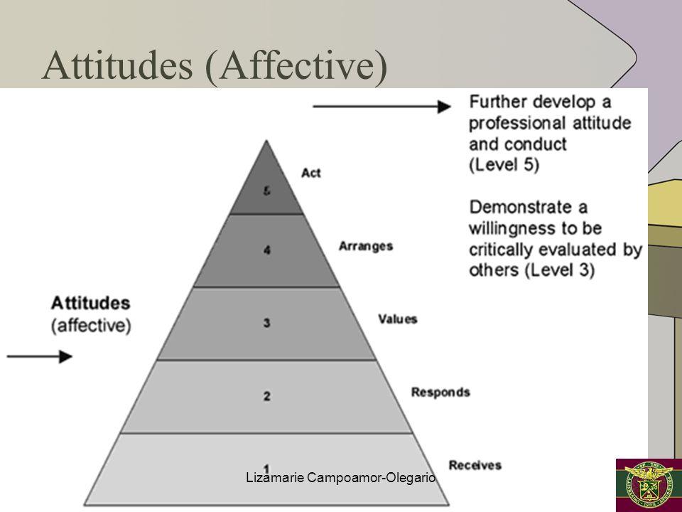 Attitudes (Affective) Lizamarie Campoamor-Olegario