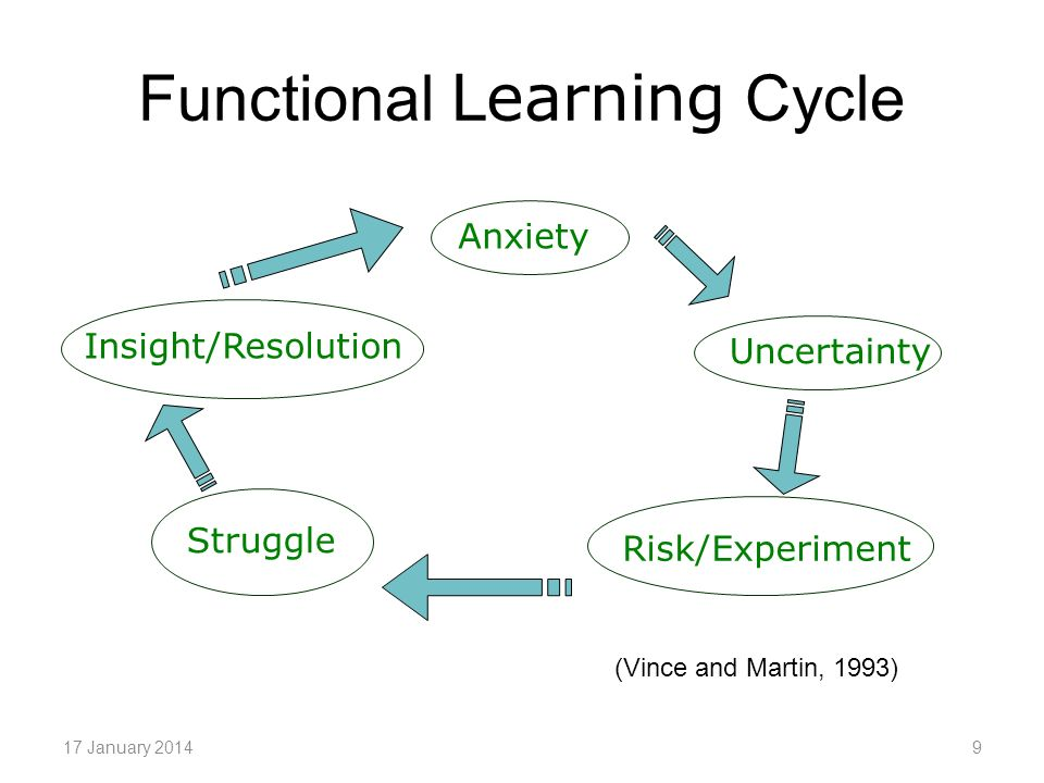 Dysfunctional Learning Cycle 17 January 201410 Anxiety Fight/Flight/Freeze Defensiveness Denial/Avoidance Wilful ignorance Disengagement (Vince and Martin, 1993)