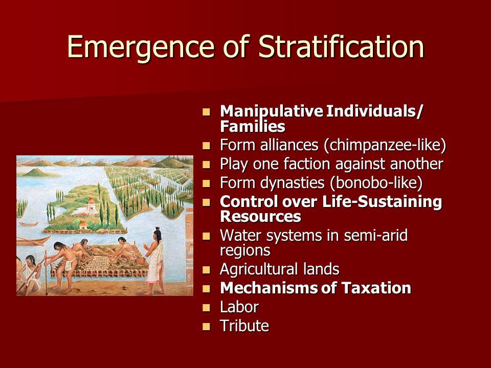 Emergence of Stratification Manipulative Individuals/ Families Manipulative Individuals/ Families Form alliances (chimpanzee-like) Form alliances (chi