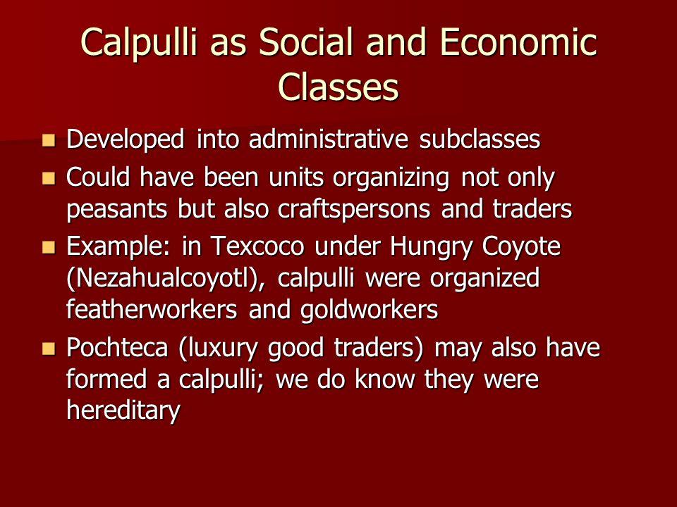 Calpulli as Social and Economic Classes Developed into administrative subclasses Developed into administrative subclasses Could have been units organi