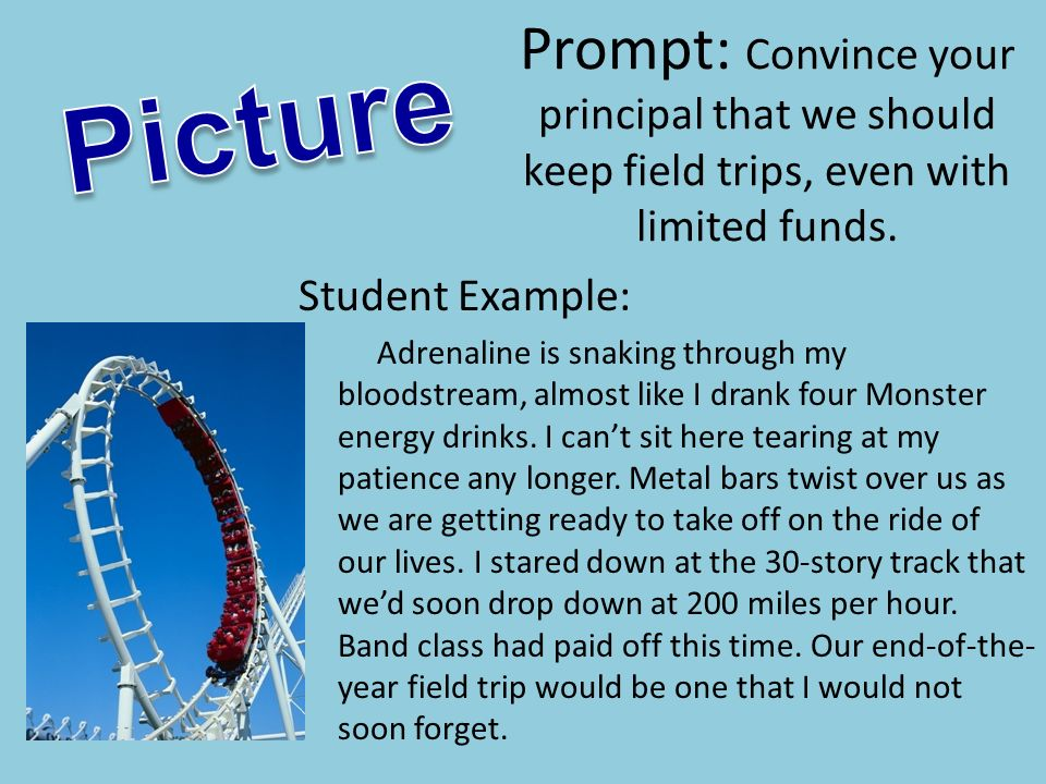 Prompt: Convince your principal that we should keep field trips, even with limited funds.