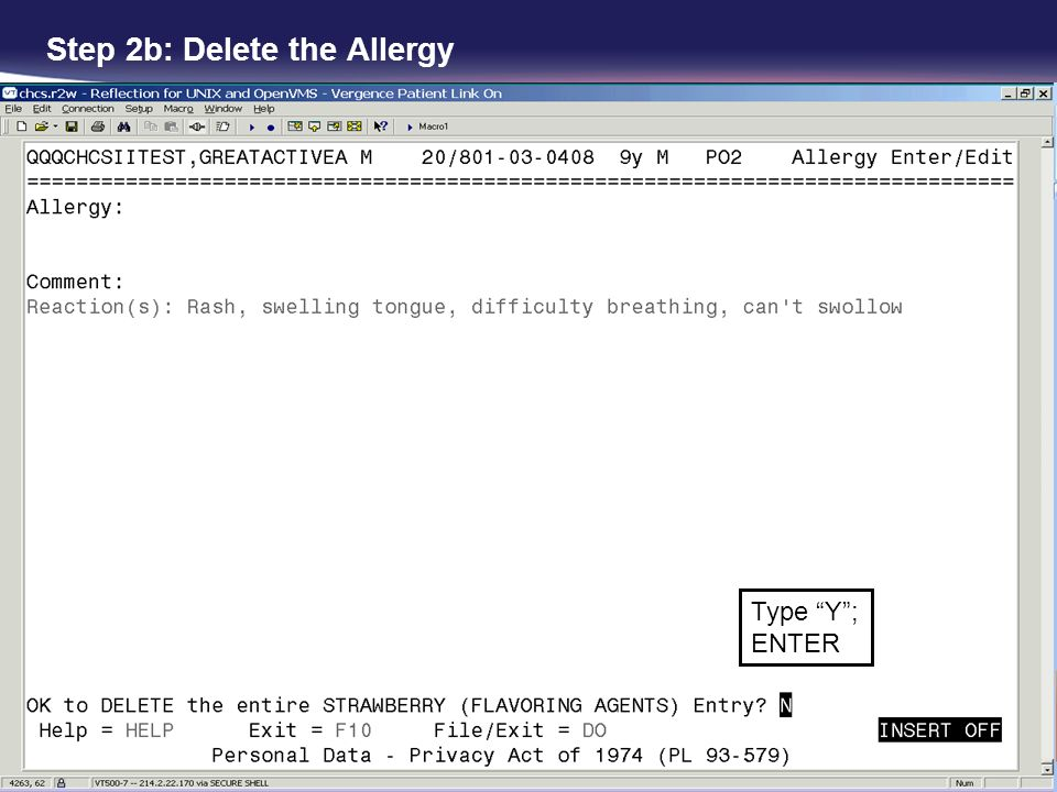 Step 2b: Delete the Allergy Type Y; ENTER