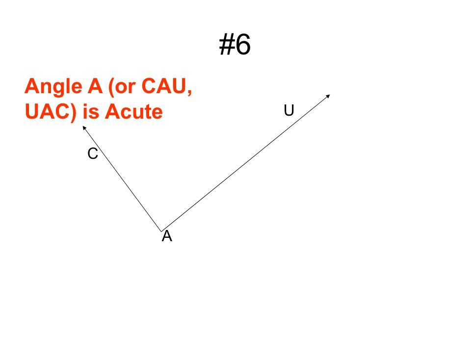 #6 U A Angle A (or CAU, UAC) is Acute C