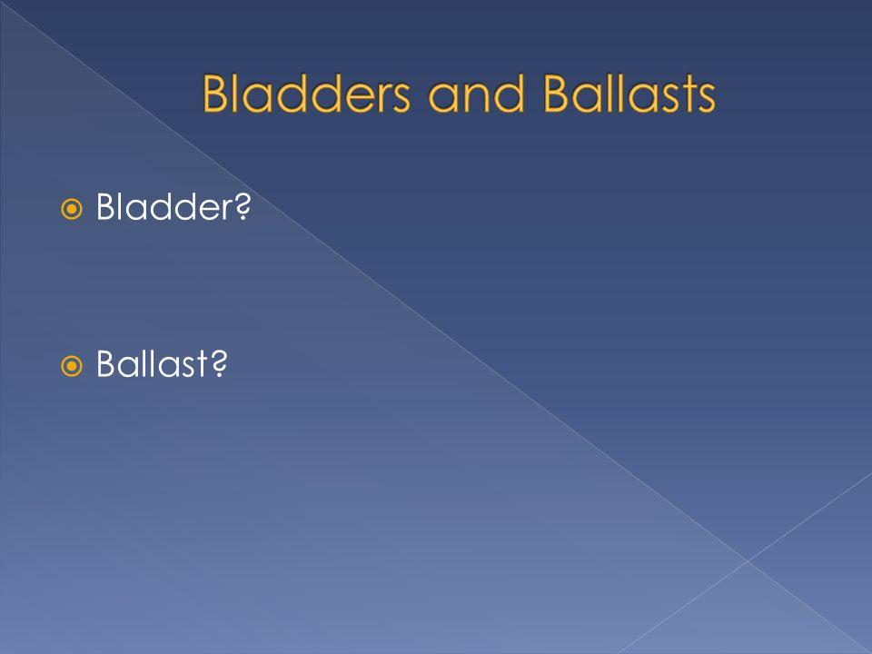 Bladder? Ballast?