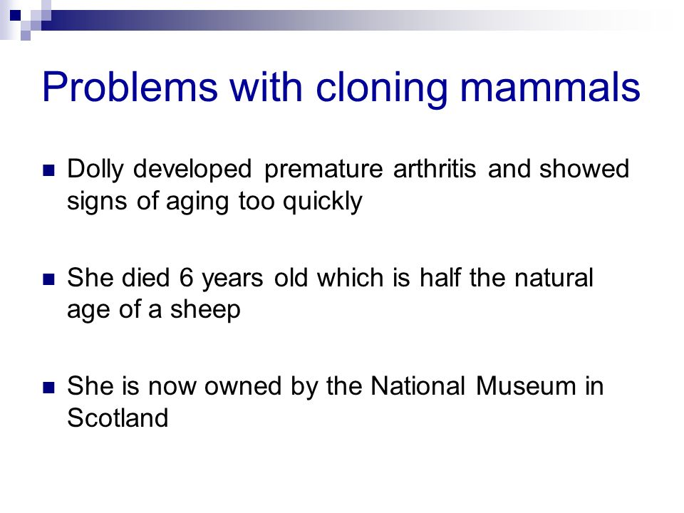 Problems with cloning mammals Dolly developed premature arthritis and showed signs of aging too quickly She died 6 years old which is half the natural age of a sheep She is now owned by the National Museum in Scotland