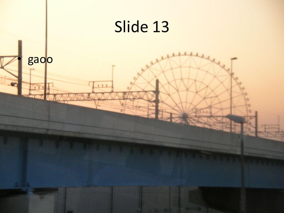 Slide 13 gaoo
