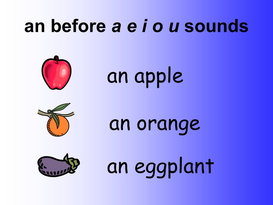 an before a e i o u sounds an apple an orange an eggplant