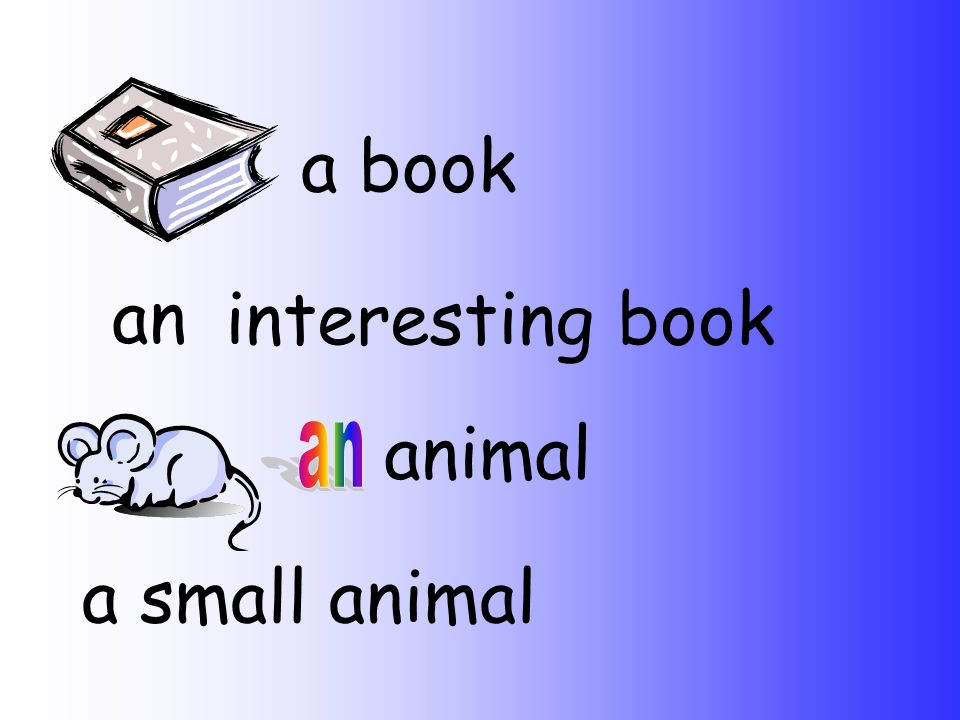 a book an interesting book animal a small animal