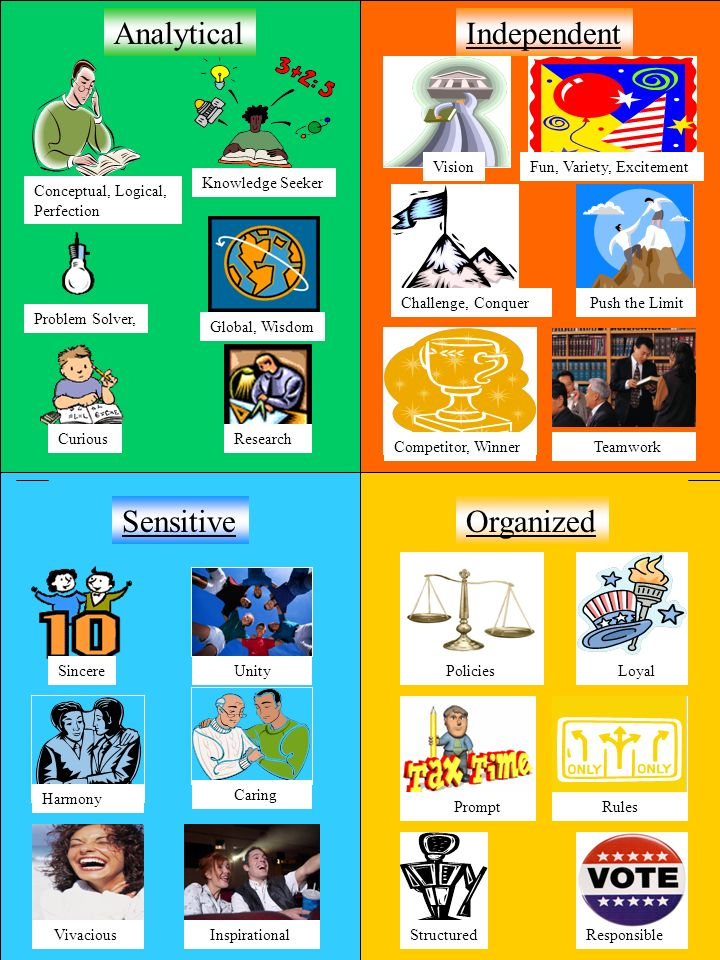 Conceptual, Logical, Perfection Knowledge Seeker Global, Wisdom Problem Solver, CuriousResearch Global, Wisdom Problem Solver, CuriousResearch Competitor, Winner Challenge, Conquer VisionFun, Variety, Excitement Independent Push the Limit Teamwork Analytical Sensitive Unity Harmony Sincere Caring Vivacious Inspirational Organized Loyal Rules Policies Responsible Prompt Structured