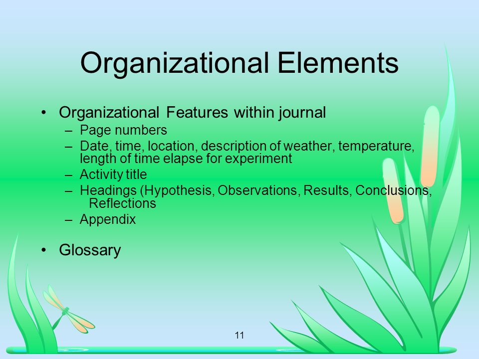 Organizational Elements Organizational Features within journal –Page numbers –Date, time, location, description of weather, temperature, length of time elapse for experiment –Activity title –Headings (Hypothesis, Observations, Results, Conclusions, Reflections –Appendix Glossary 11