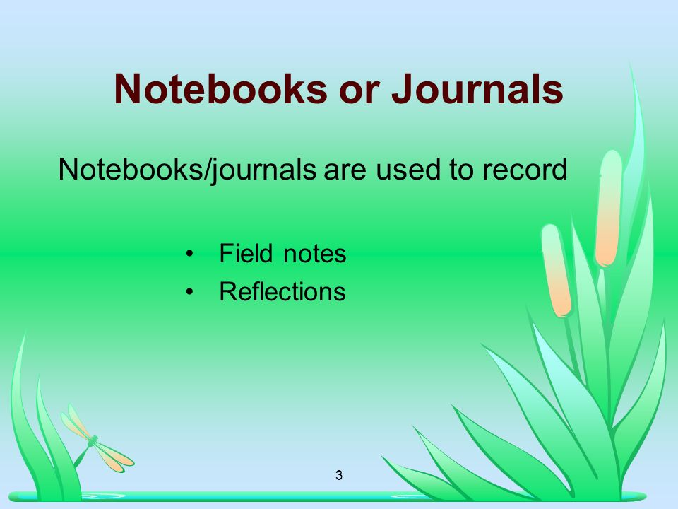 Notebooks or Journals Notebooks/journals are used to record Field notes Reflections 3