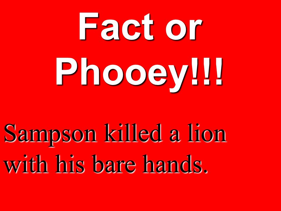 Fact or Phooey!!! Sampson killed a lion with his bare hands.