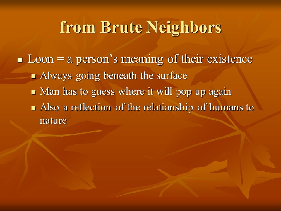 from Brute Neighbors Loon = a persons meaning of their existence Loon = a persons meaning of their existence Always going beneath the surface Always g