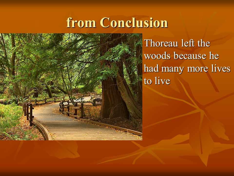from Conclusion Thoreau left the woods because he had many more lives to live Thoreau left the woods because he had many more lives to live