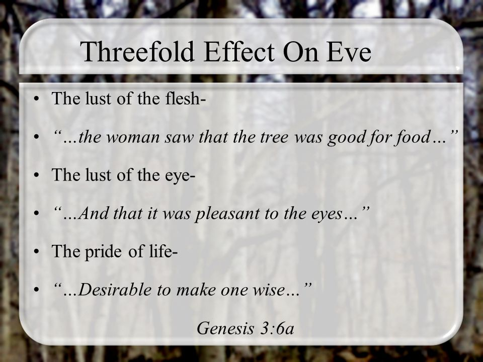 Threefold Effect On Eve The lust of the flesh- …the woman saw that the tree was good for food… The lust of the eye- …And that it was pleasant to the e