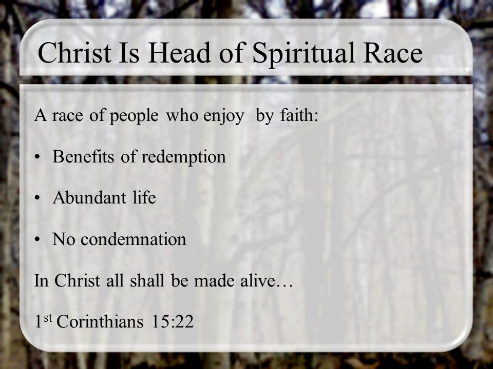 Christ Is Head of Spiritual Race A race of people who enjoy by faith: Benefits of redemption Abundant life No condemnation In Christ all shall be made alive… 1 st Corinthians 15:22