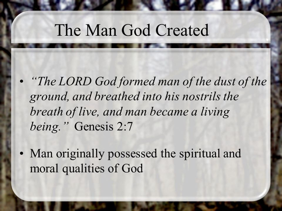 The Man God Created The LORD God formed man of the dust of the ground, and breathed into his nostrils the breath of live, and man became a living being.