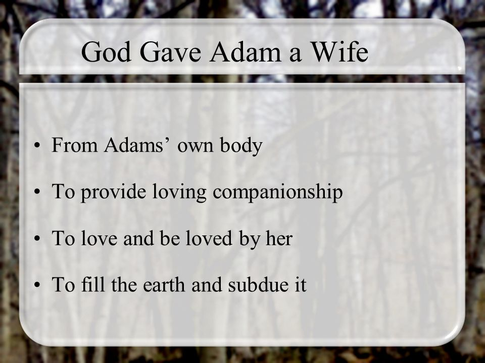 God Gave Adam a Wife From Adams own body To provide loving companionship To love and be loved by her To fill the earth and subdue it