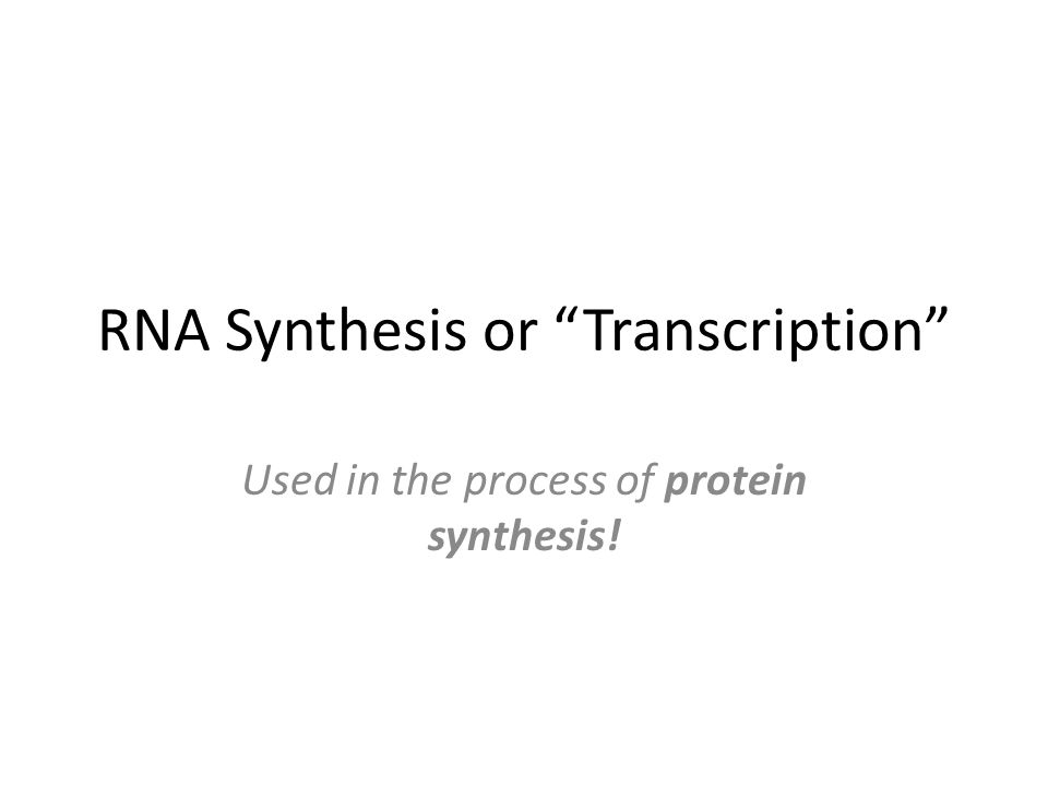RNA Synthesis or Transcription Used in the process of protein synthesis!