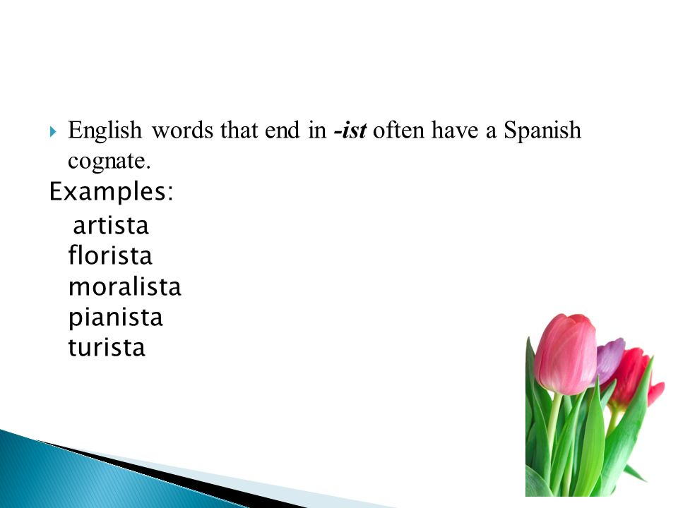 English words that end in -ist often have a Spanish cognate. Examples: artista florista moralista pianista turista