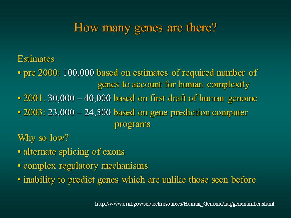 How many genes are there.