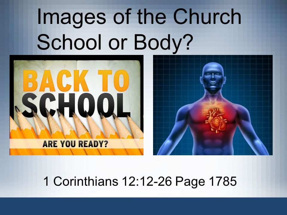 Images of the Church School or Body? 1 Corinthians 12:12-26 Page 1785