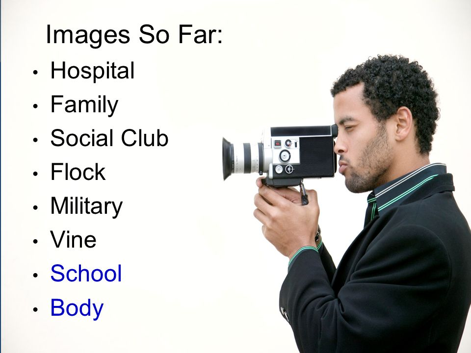 Images So Far: Hospital Family Social Club Flock Military Vine School Body
