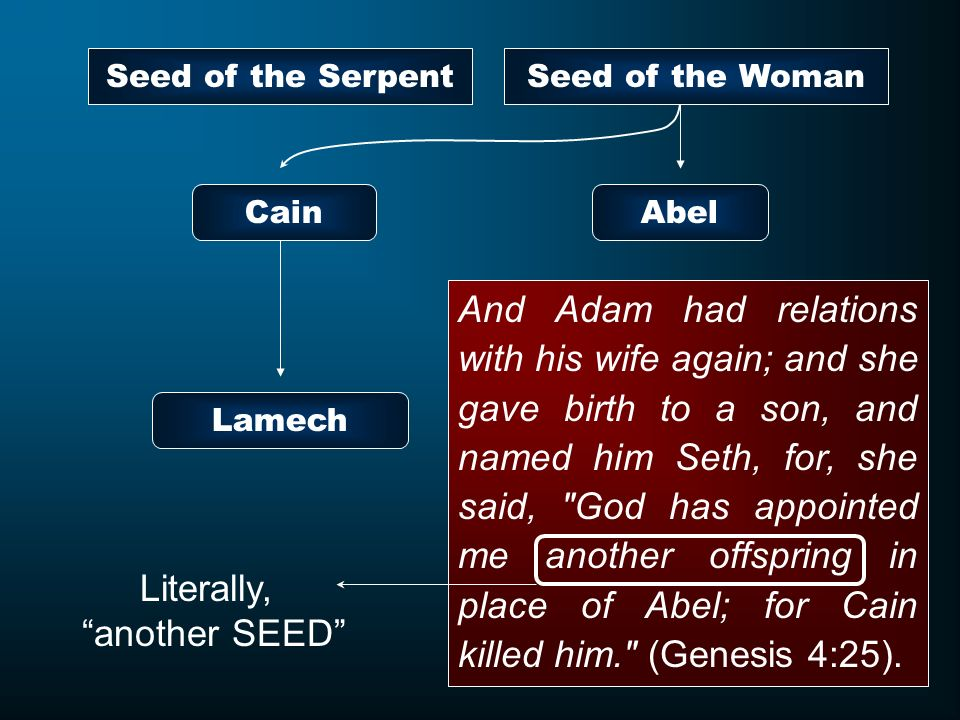 And Adam had relations with his wife again; and she gave birth to a son, and named him Seth, for, she said,