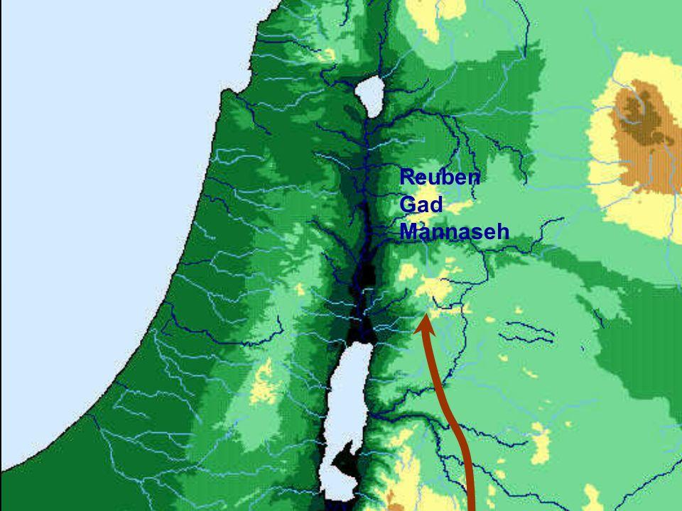 Reuben Gad Mannaseh