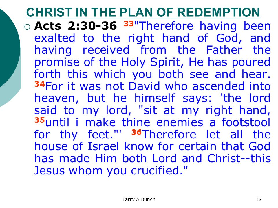 Larry A Bunch18 CHRIST IN THE PLAN OF REDEMPTION Acts 2:30-36 33
