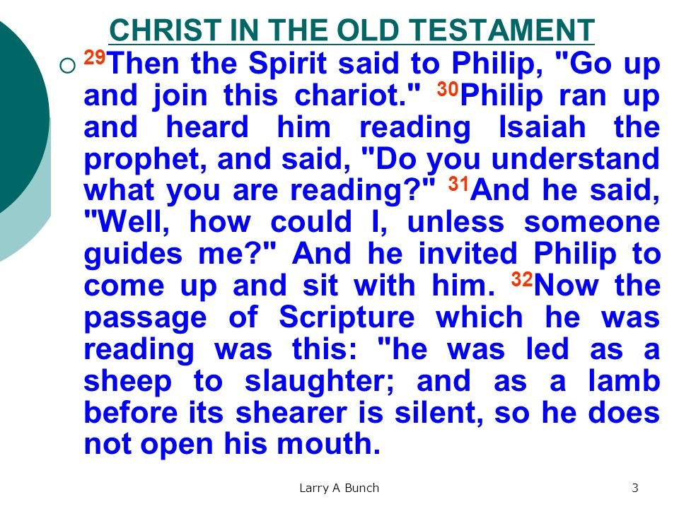 Larry A Bunch3 CHRIST IN THE OLD TESTAMENT 29 Then the Spirit said to Philip,