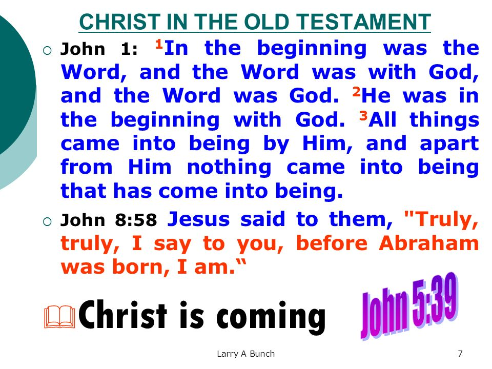 Larry A Bunch7 CHRIST IN THE OLD TESTAMENT John 1: 1 In the beginning was the Word, and the Word was with God, and the Word was God. 2 He was in the b