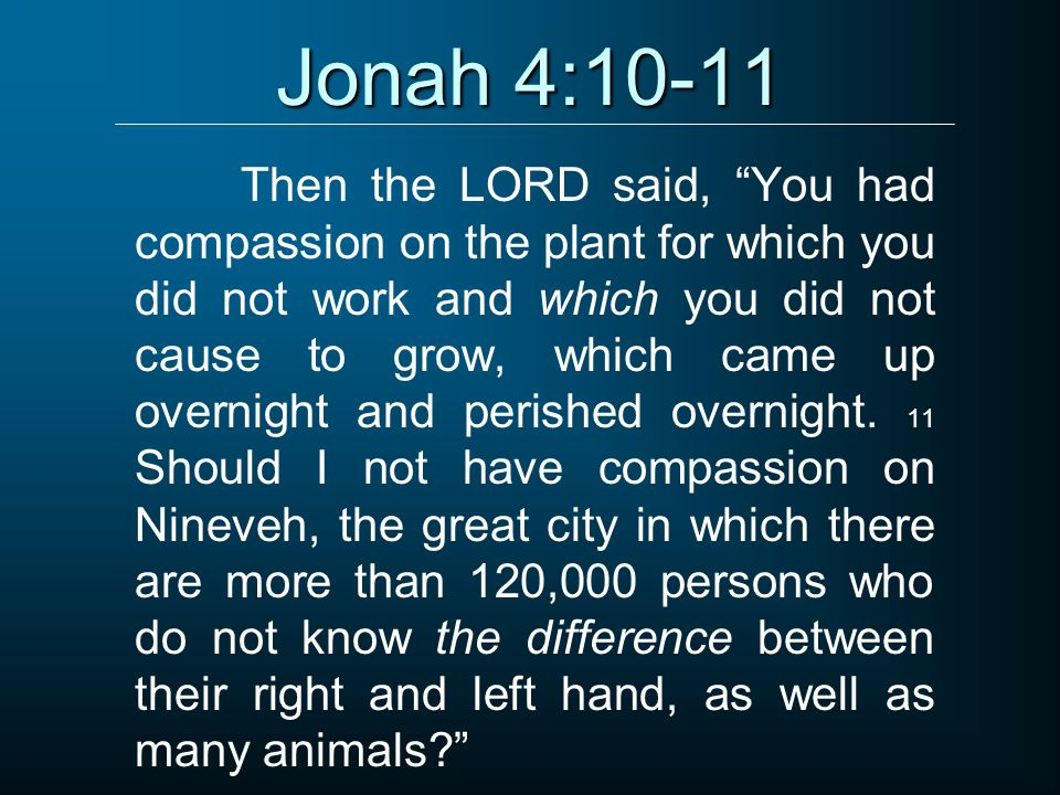 Jonah 4:10-11 Then the LORD said, You had compassion on the plant for which you did not work and which you did not cause to grow, which came up overni
