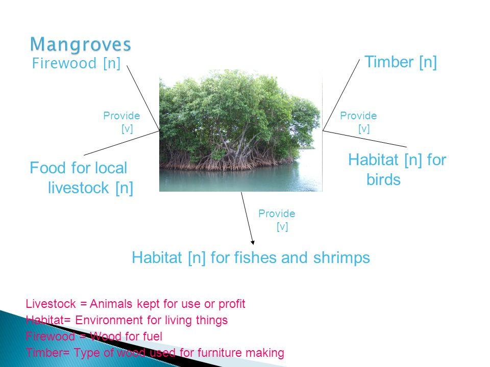 Firewood [n] Timber [n] Habitat [n] for fishes and shrimps Habitat [n] for birds Food for local livestock [n] Provide [v] Firewood = Wood for fuel Hab