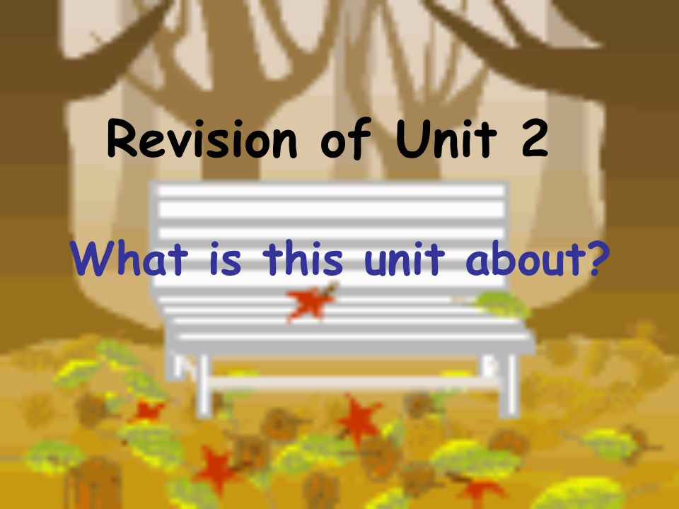 Revision of Unit 2 What is this unit about?