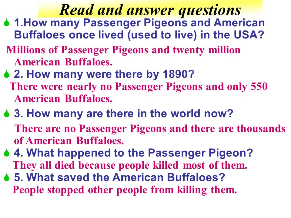 Read and answer questions 1.How many Passenger Pigeons and American Buffaloes once lived (used to live) in the USA.