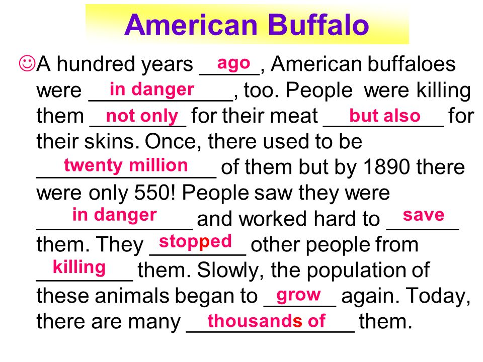 American Buffalo A hundred years _____, American buffaloes were ____________, too. People were killing them ________ for their meat __________ for the