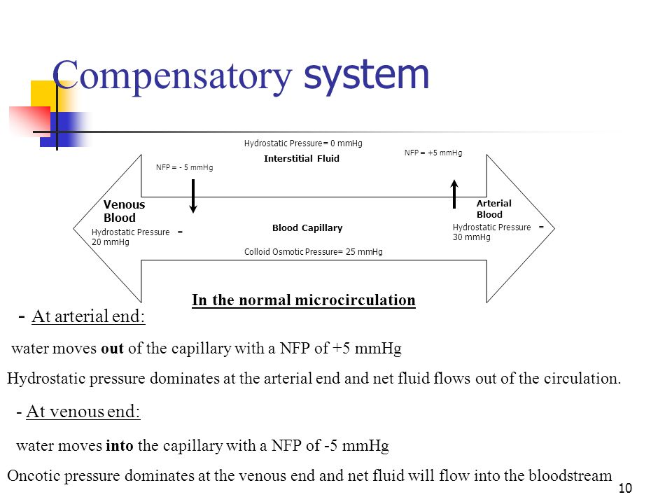 10 Compensatory system Blood Capillary Venous Blood Hydrostatic Pressure = 30 mmHg Hydrostatic Pressure = 20 mmHg Colloid Osmotic Pressure= 25 mmHg Ar