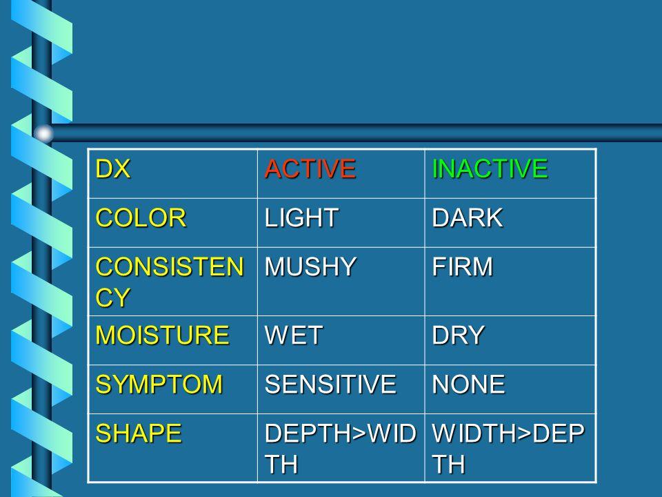 DXACTIVEINACTIVE COLORLIGHTDARK CONSISTEN CY MUSHYFIRM MOISTUREWETDRY SYMPTOMSENSITIVENONE SHAPE DEPTH>WID TH WIDTH>DEP TH