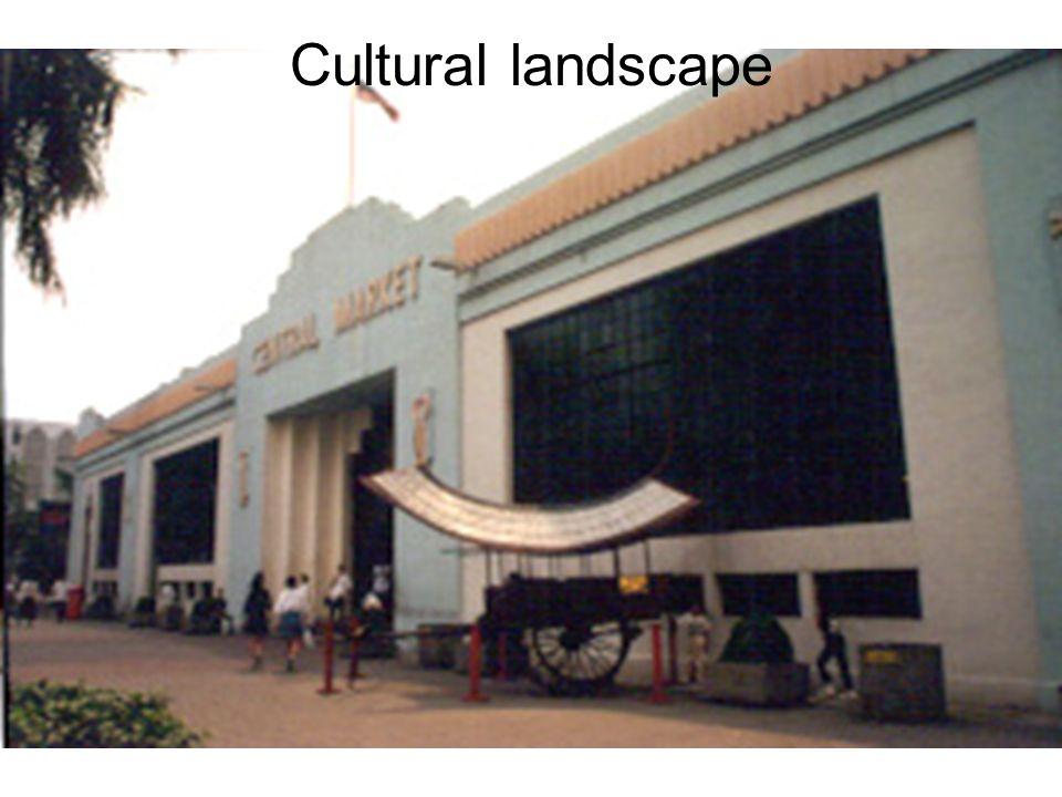 Cultural landscape