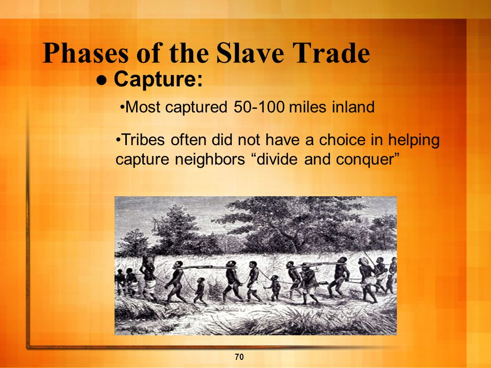 70 Phases of the Slave Trade Capture: Tribes often did not have a choice in helping capture neighbors divide and conquer Most captured 50-100 miles in