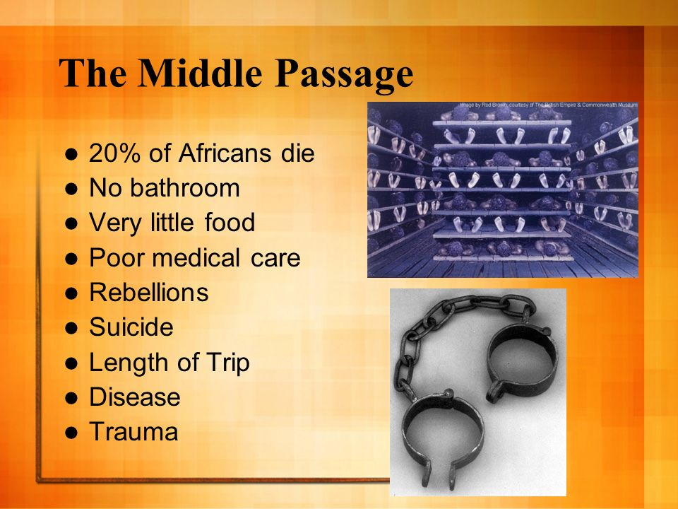 The Middle Passage 20% of Africans die No bathroom Very little food Poor medical care Rebellions Suicide Length of Trip Disease Trauma