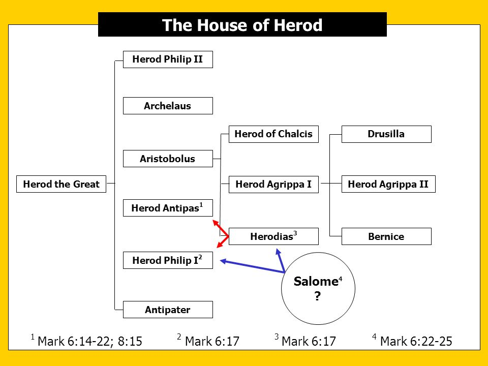 Herod the Great Antipater Herod Philip I 2 Herod Antipas 1 Herod Agrippa I Archelaus The House of Herod Herod Philip II Aristobolus Herod of Chalcis H